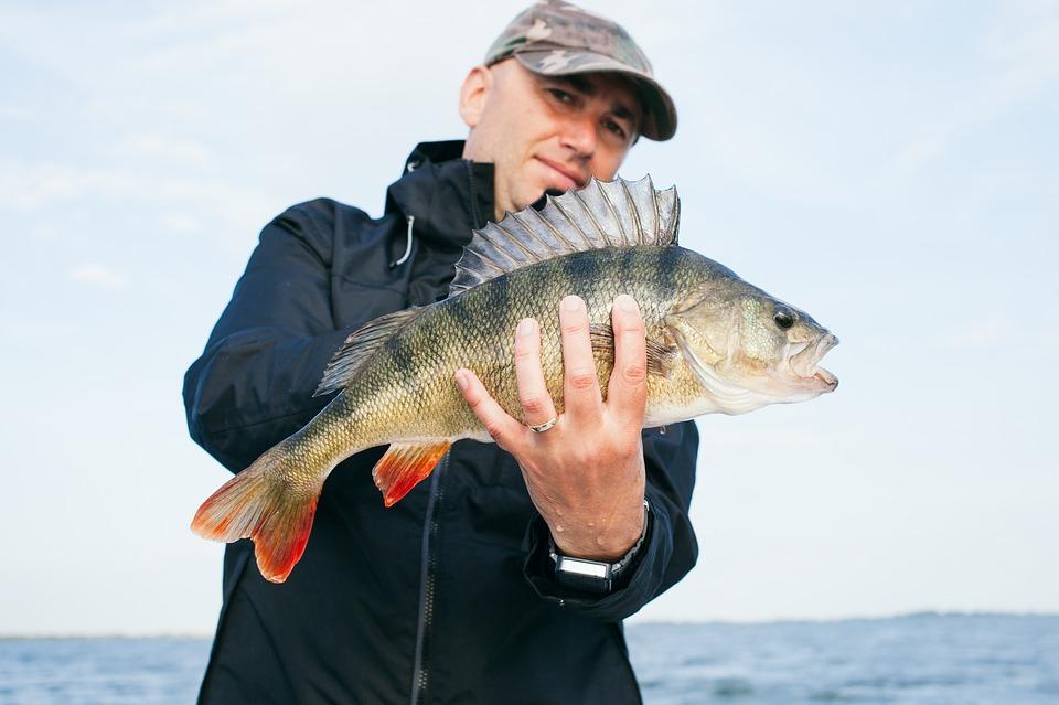 pêchez comme un professionnel